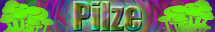 Pilze Banner